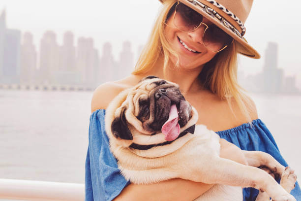 Popular Pet-friendly Communities to Move Home in Dubai